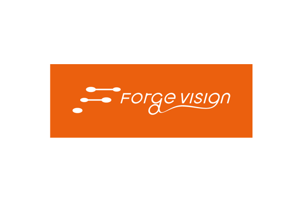 Forge Vision features